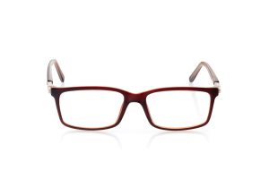Men Full Frame Plastic  Aura: 16-65 Brown with Clear Brown & Gold 2006570
