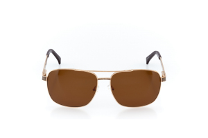 Men Full Frame Metal  CARTER: 15-29 Gold & Brown with Brown Tint 2002233