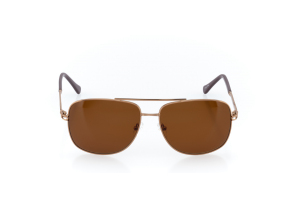Men Full Frame Metal  CARTER: 16-16 Gold & Brown w/ Brown Tint 2007832