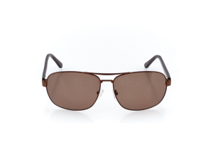 Men Full Frame Metal  CARTER: 17-04 Brown w/ Brown Tint 2008748