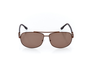 Men Full Frame Metal  CARTER: 17-05 Brown & Tortoise w/ Brown Tint 2008752