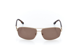 Men Full Frame Metal  CARTER: 17-07 Matte Gold & Tortoise w/ Brown Tint 2008756