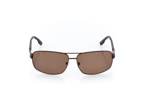 Men Full Frame Metal  CARTER: 17-07 Brown w/ Brown Tint 2008757