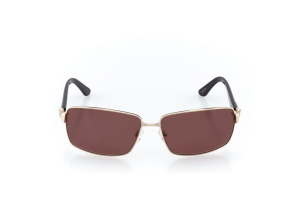 Men Full Frame Metal  Impression: 17-09 Gold & Pearl Brown w/ Brown Tint 2008731