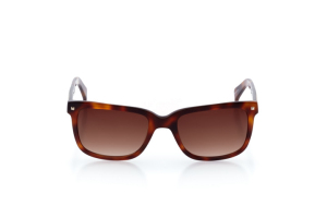 Men Full Frame Plastic  Swiss: 16-04 Tortoiseshell 2003947